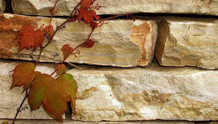 Aménagement extérieur maison par maçon pour construire en Vendée